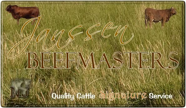Janssen Registered Beefmaster Show  Heifers, Bulls & Cattle